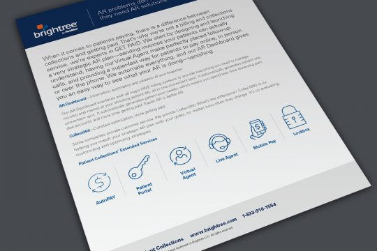 Brightree Datasheet Overview